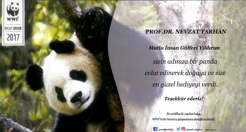 Prof. Dr. Nevzat Tarhan'a evlat panda