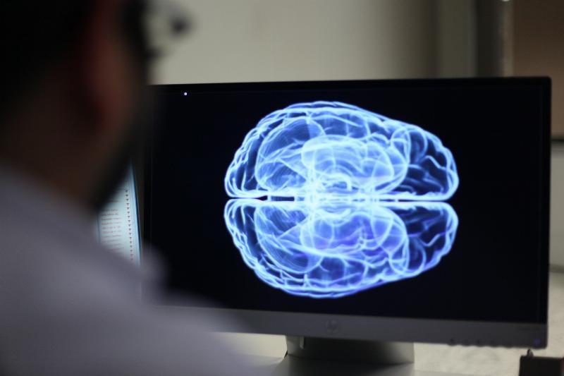 Sağlık Bilimleri Enstitüsü Moleküler Nörobilim Doktora Programı