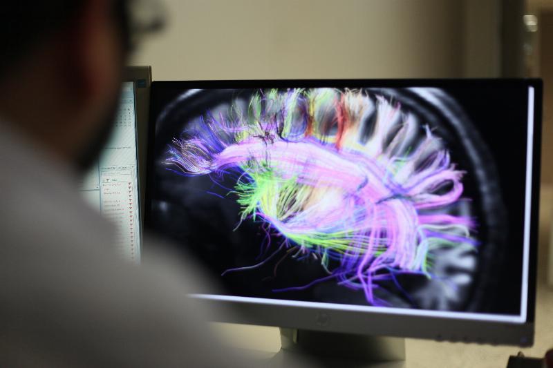 Sağlık Bilimleri Enstitüsü Nörobilim (Tezli-Tezsiz) Yüksek Lisans Programı