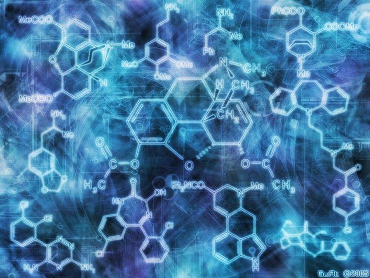 Moleküler Nörobilim Doktora