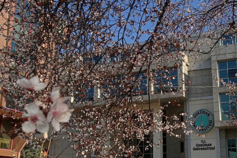 Üsküdar Üniversitesinde büyüme var, istihdama ara yok!