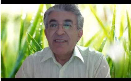 Prof. Dr. Murat Kalemoğlu