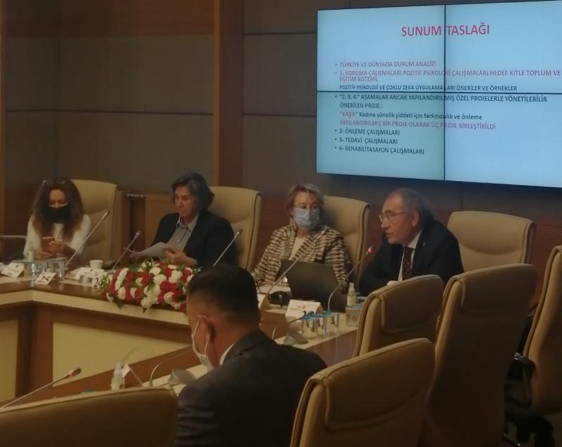 Prof. Dr. Tarhan, Kadına Şiddeti Önlemenin Yollarını TBMM'de anlattı